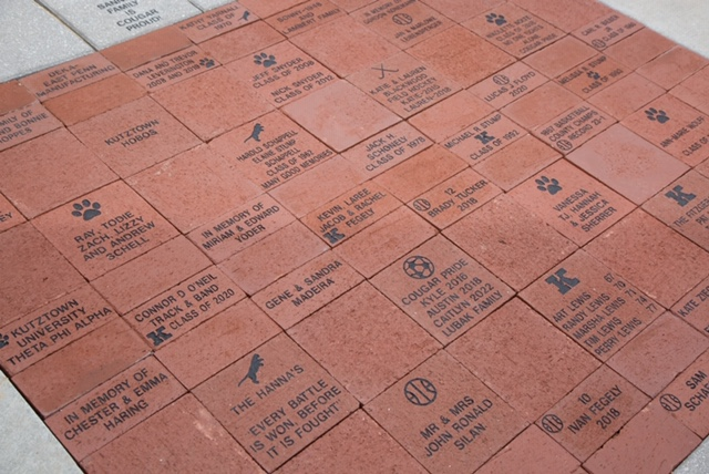 section of dedicated bricks for stadium